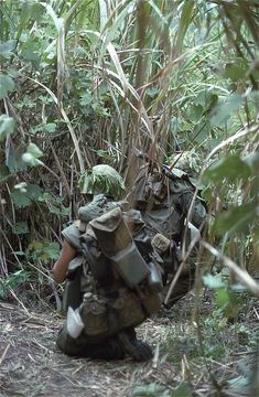 Marines from Mike Co, moving through the jungle near the DMZ, From the Robert L. Drieslein Collection at the Archives Branch, Marine Corps History Division Vietnam History, Vietnam War Photos, North Vietnam, Vietnam Veterans, Marine Corps History, Us Marine Corps, Military History, My War, American War