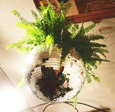 Already have the disco ball planter, just need to add the perfect fern.