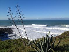 Portugal Holidays, Soul Surfer, Surfers, Mountains, Beach, Water, Travel, Outdoor, Surf Girls