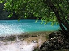 Jamaica! This looks like the place we went to go on a river tubing adventure. It was amazing!!