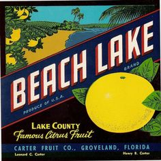 Items similar to Vintage Crate Art - BEACH LAKE - Citrus Fruit Shipping label - - Industrial art on Etsy Old Florida, Vintage Florida, Florida Travel, Central Florida, Orange Crate Labels, Florida Oranges, Pear Fruit, Vintage Labels, Vintage Signs