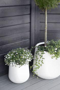 modern-outdoor-pots-8.jpg 700×1050 pikseliä