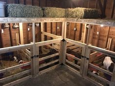 How To Raise Goats: Natural Goat Care for Meat, Milk and Profits in Your Backyard - Tools And Tricks Club Goat Playground, Goat Shelter, Sheep Shelter, Goat Shed, Barn Stalls, Horse Stalls, Goat Care, Raising Goats, Raising Farm Animals