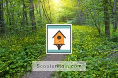 Printable checkoff sheet for the Fur, Feathers, and Ferns Bear adventure for Cub Scouts to keep track of your den's progress. The check off sheet can be printed or saved as PDF file