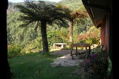 Magoebaskloof Birders Cottages