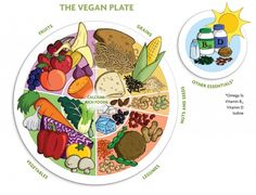 """Graphic from """"Becoming Vegan: Comprehensive Edition"""" and from""""Becoming Vegan: Express Edition"""" both by Registered Dietitians Brenda Davis and Vesanto Melina, Book Publishing Co. This vegan food guide was designed. Nutrition Sportive, Sport Nutrition, Vegan Nutrition, Nutrition Plans, Nutrition Tips, Nutrition Store, Child Nutrition, Nutrition Poster, Nutrition Month"""