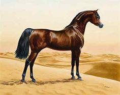 Arabian horse painting in his desert home