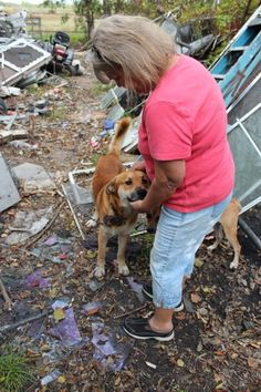 Houston homeless dogs need a dog house:    http://www.examiner.com/article/homeless-puppies-houston-need-a-dog-house