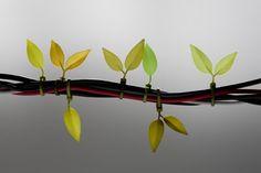 did you just make cable ties beautiful? whaaaaaaat.