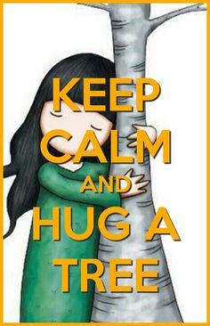 Keep calm hug a tree