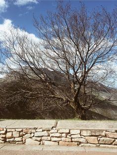 See more of kaylinteneal's content on VSCO. South Africa, Vsco, My Photos, Sidewalk, Mountain, Travel, Viajes, Side Walkway, Walkway