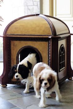 Dog bed for small dogs #pethouse #kennel #chenil #interiordesign - More wonders at www.francescocatalano.it
