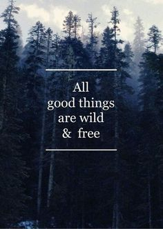 On Wanderlust, all good things are wild and free