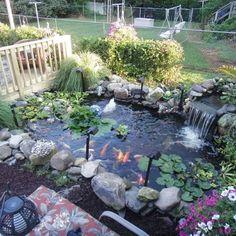 Backyard Water Feature, Ponds Backyard, Backyard Fences, Garden Fencing, Backyard Ideas, Fish Pond Gardens, Back Gardens, Garden Pond, Water Gardens