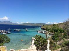 Menjangan Island - Pemuteran