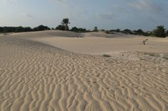 Sand dunes at the Indian ocean coast in Noged