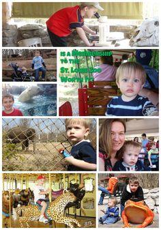 St. Louis Zoo membership