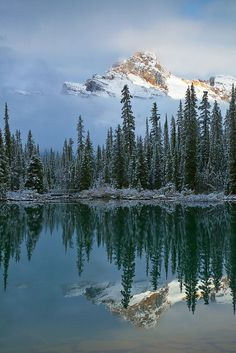Cathedral Mountain Reflected in Lake O'Hara, Yoho National Park, British Columbia, Canada; photo by Lee Rentz