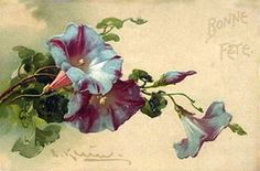Vintage card / 1906 / Purple Convolvulus / C. Vintage Paper Crafts, Art Vintage, Vintage Cards, Vintage Postcards, Vintage Prints, Catherine Klein, Flower Images, Flower Pictures, Flower Art