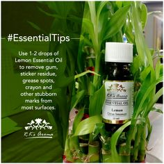 Wipe away those unsightly stains and marks from your furniture, carpet or floor with just two drops of R.K's Aroma Lemon Essential Oil! #EssentialTips