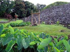 Ulupo Heiau, Kailua, Oahu, Hawaii