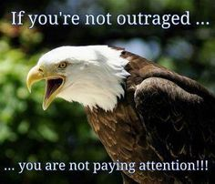 If Your Not Outraged....You Are Not Paying Attention!! Wake up, Americans!