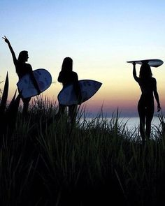 "1,515 curtidas, 9 comentários - Surfing   Surf Photography (@thesurfiety) no Instagram: ""Dawn patrol.. Follow @thesurfiety for more! Credit: @unknown? #TheSurfiety #surf #beach #surfer…"""