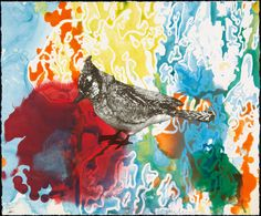 Blue Jay Monotypes, 2010  by Anne Chu