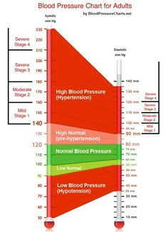 Blood Pressure Chart For Adults (And Everything You Need To Know About High Blood Pressure)
