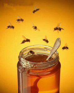 Miel y canela.