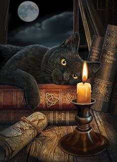 Entranced by the midnight candle burning, the black cat lays still as The Witching Hour nears. A haunting 1000 piece puzzle by artist Lisa Parker perfect for Halloween and full moon nights. Crazy Cat Lady, Crazy Cats, Chat Halloween, Halloween Projects, Holidays Halloween, Earth Design, Cat Love, Stuffed Animals, Cats And Kittens