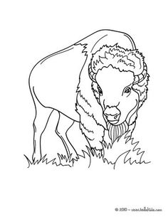 cenozoic animals coloring pages - photo#40