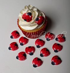 Set of 12 Edible Sugar Ladybug Toppers for Cakes or Cupcakes -- Awesome product. Click the image at