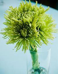 wedding flowers green mums - Google Search