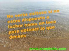 Arancha Hidalgo Cañizares: Google+