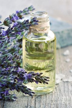 Lavender Oil Print by Mythja Photography.