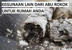 Kotor dan Beracun, Ternyata Abu Rokok Ada Gunanya Lho di Rumah