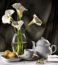 Composition I by Carlos Relva Still Life Flowers, Still Life Fruit, Calla Lillies, Calla Lily, Lily Painting, Still Life Photos, Photo Composition, Green Nature, Still Life Photography