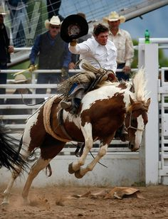 Best Rodeo Photos, Cowboy Rodeo,Cattle Ranches,Cowboy Tools,Cattle ...