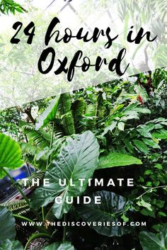 The Ultimate Travel Guide to Oxford - Everything to do, see, drink and eat during a 24 hour trip.
