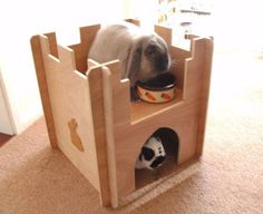 Rabbit Castle house