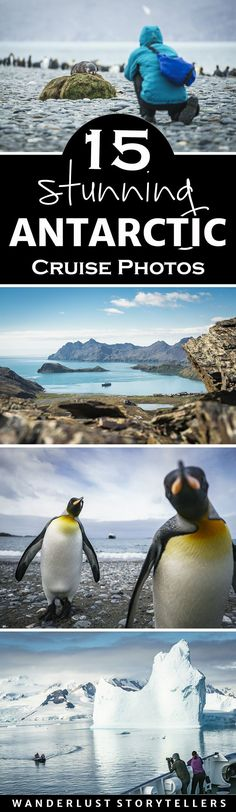 Take an Antarctic Cruise to see the wildlife and spectacular landscape!  Click to see 15 stunning photos. >>>>>>>>>>>>>>>>>>>>>>>>>>Antarctica Travel | Antarctica Photography | Antarctica Cruise | Antarctica Animals | Antarctica Landscape | Cruise Ideas | Cruise Pictures
