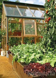 """Tämä upea kasvihuone ja korotettu kasvimaa löytyivät Hampton Courtin puutarhanäyttelystä Englannista. Lisää kasvihuoneita taulussa """"Kasvihuoneet ja lavat""""."""