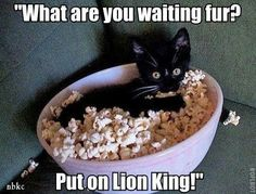"""""""What are you waiting fur? Put on Lion King!"""""""