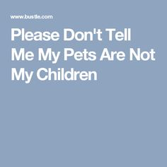 Please Don't Tell Me My Pets Are Not My Children