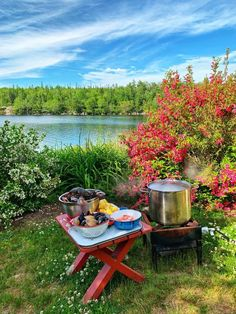 Nothing quite says summertime celebration like a good old East Coast seafood boil! Seafood Stock, Little Neck Clams, Seafood Boil Recipes, Live Lobster, Boiled Food, Old Bay Seasoning, Feeding A Crowd, Good Old, Picnics