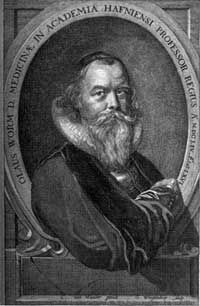 Johannes Bureus, the Renaissance rune magician