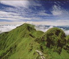 Mount Nimba, Guinea/Cote d'Ivoire.  http://www.worldheritagesite.org/sites/mountnimba.html