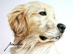 Golden Retriever Puppy. Pencil drawing. Custom portrait.