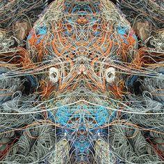Octopus 60 X 60 X 2 Fotografia/digitale 2014 Please click and share onFacebook like,Twitter, PinterestandGoogle plus